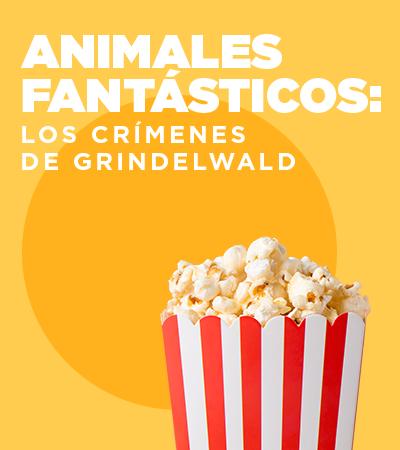 Animales fantásticos - Barranquilla