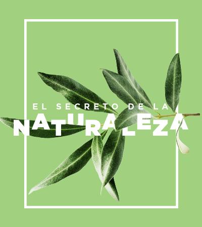 El secreto de la naturaleza - Laureles