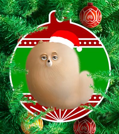 Pets navideños - La ceja