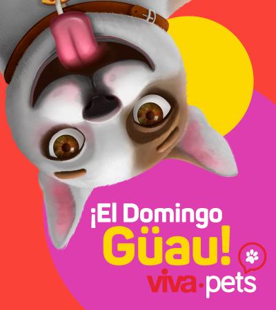 Feria Viva Pets - Sincelejo