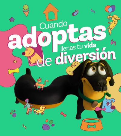 Jornada de adopción - Villavicencio